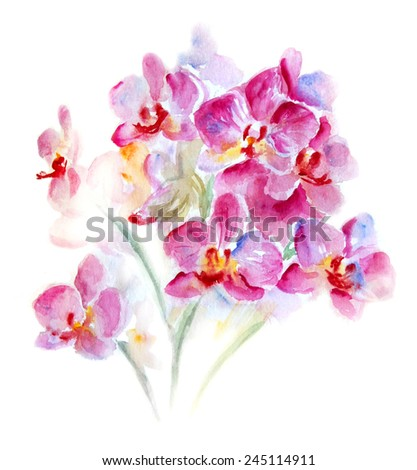 Bouquet of crimson orchids. Watercolor illustration isolated on white.