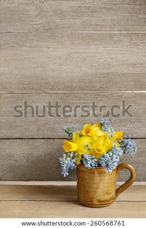 Bouquet of daffodils and blue muscari (Grape hyacinth), copy space