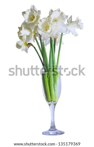 bouquet of daffodils in a glass isolated on white