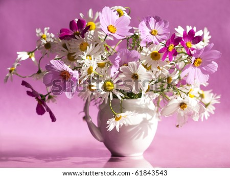 bouquet of daisies in a white vase - stock photo