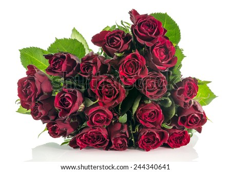bouquet of dark red roses isolated on white background
