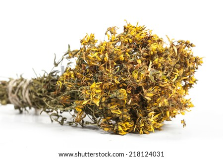 Bouquet of dried herb Hypericum perforatum on white - stock photo