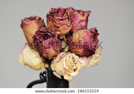 bouquet of dried roses in ceramic vase on gray - stock photo