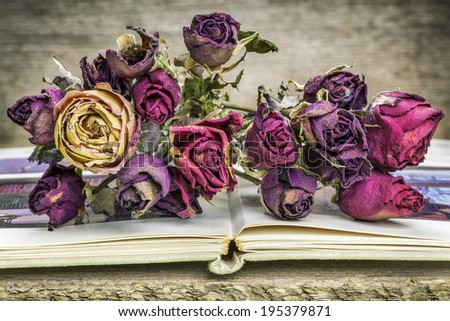 Bouquet of dried roses on old book - stock photo