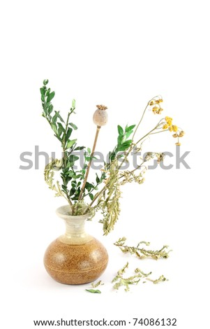 Bouquet of dry flowers in a vase - stock photo