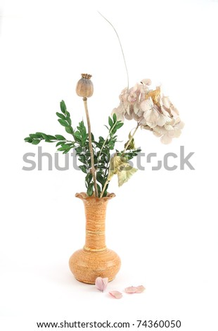 Bouquet of dry flowers in a vase on white - stock photo
