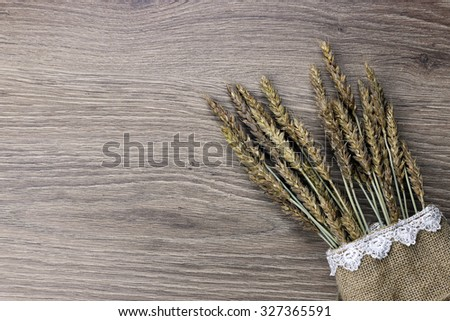 bouquet of ears of rye on canvas