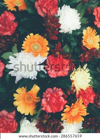 Bouquet of flowers background - stock photo