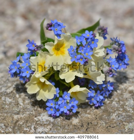 Bouquet of flowers. Bouquet of flowers forget me not. Bouquet of flowers  on stone background. Bouquet of flowers on old stone, copy space. Bouquet of flowers isolated on nature background.  - stock photo