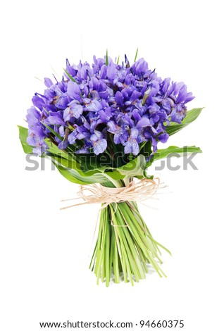 bouquet of flowers iris - stock photo