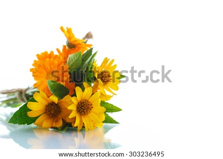 bouquet of flowers with summer daisies on a white background