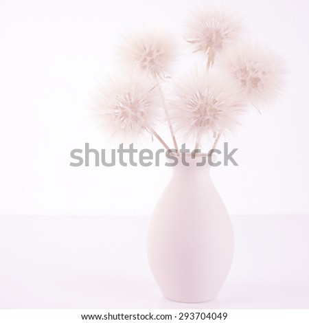 Bouquet of fluffy dandelions in vase on light background (non isolated). Pink toned image, high key. - stock photo
