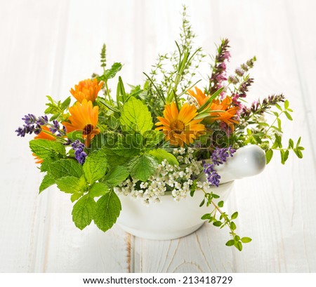 Bouquet of fresh herbs in mortar - stock photo