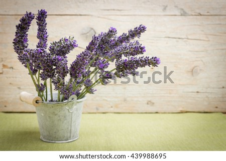 Bouquet of fresh lavender flowers - stock photo