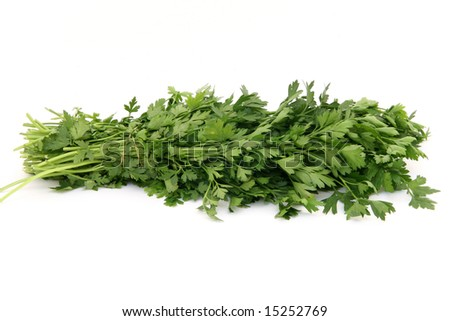 bouquet of fresh parsley isolated on white background