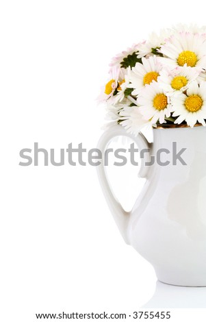 Bouquet of fresh wild daisies in vase isolated on white.