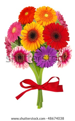 Bouquet of gerber flowers isolated on white - stock photo
