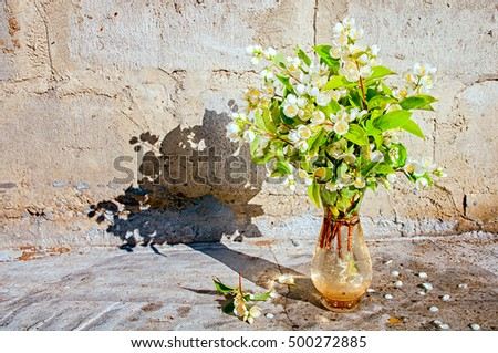 Bouquet of jasmine flowers near the concrete wall with copy space for your text