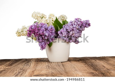 bouquet of lilac flowers in flower pot on white background. - stock photo