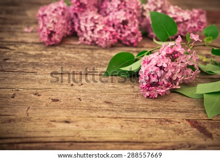 Bouquet of lilac spring flowers on wooden background. Vintage floral background. - stock photo