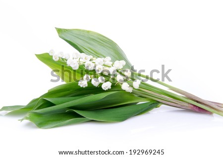 Bouquet of lilies, isolated on white