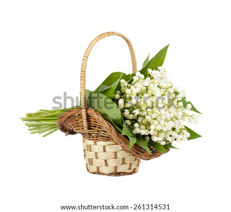 bouquet of lilies of the valley in the basket isolated - stock photo
