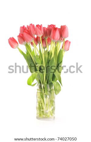 bouquet of many red tulips in glass vase - stock photo