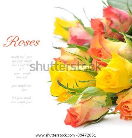 Bouquet of multicolored roses isolated on white background with copyspace - stock photo