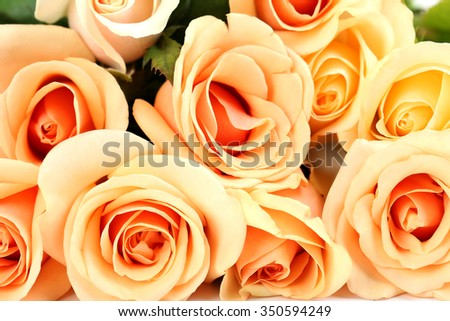 Bouquet of orange roses background, close up - stock photo