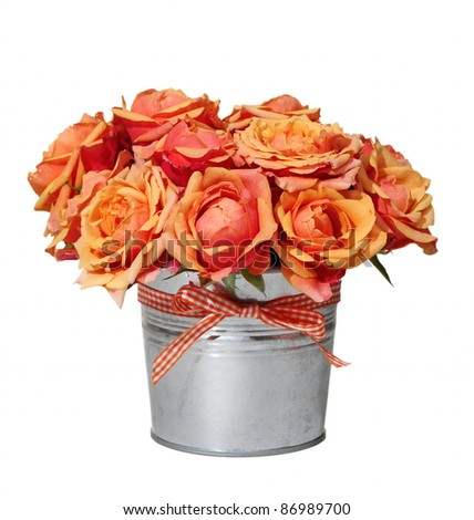 Bouquet of orange roses in the pot on the white background - stock photo
