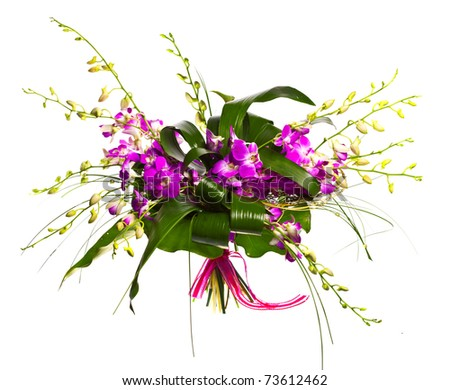 bouquet of orchids isolated over white background - stock photo