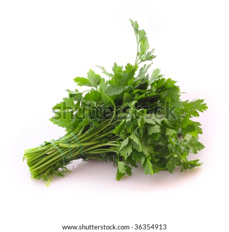 Bouquet of parsley isolated on white - stock photo