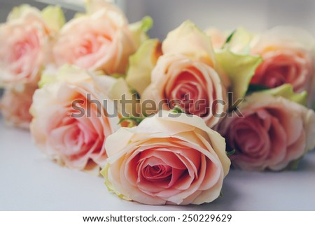 Bouquet of peach roses - stock photo
