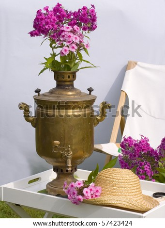 Bouquet of phloxes in a vase - stock photo
