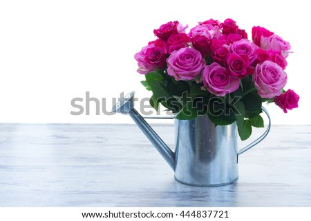 bouquet of pink and magenta fresh roses in watering can on table isolated on white background - stock photo