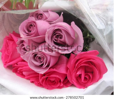 Bouquet of pink and mauve roses lying on their side - stock photo