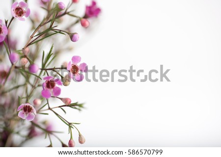 Bouquet of Pink and White Wax Flowers in Green Glass Vase