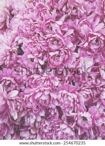 Bouquet of pink flowers. - stock photo
