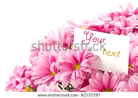bouquet of pink flowers on a white background