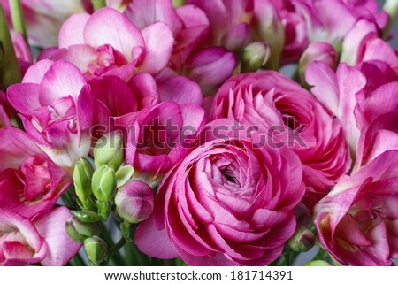 Bouquet of pink freesia flowers and pink persian buttercup flower - stock photo