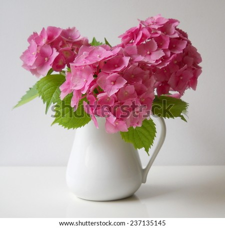 Bouquet of pink hydrangea flowers in a vase. Floral decoration with hortensia. - stock photo