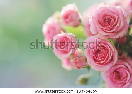 Bouquet of pink mini roses in vase on the window in the sunshine - stock photo