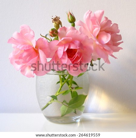 Bouquet of pink roses in a vase. Floral still life. - stock photo