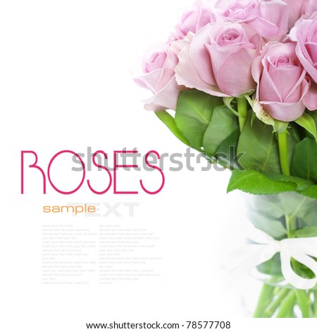 bouquet of pink roses in vase on the white background - stock photo