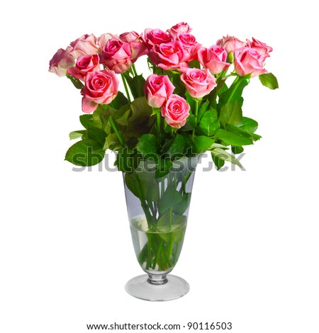 bouquet of pink roses isolated over white background