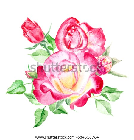 Bouquet pink roses rose bush pink stock illustration 684518764 bouquet of pink roses rose bush pink flowers watercolor painting wedding and mightylinksfo