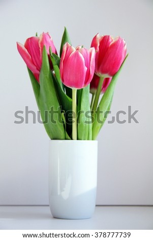 Bouquet of pink tulips in a white vase on a white background. - stock photo