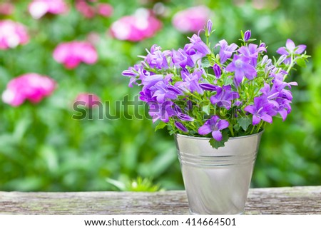 Bouquet of purple flowers in small bucket - horizontal - stock photo
