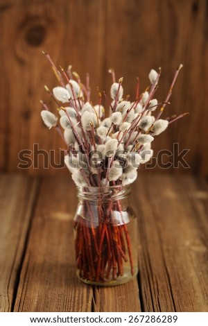 Bouquet of pussy willow twigs in glass jar on wooden background - stock photo