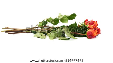 Bouquet of red orange roses over white isolated background